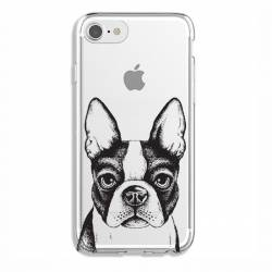 Coque transparente Iphone 6 / 6s Bull dog
