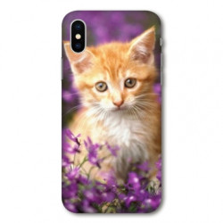 Coque pour Samsung Galaxy A01 Chat Violet